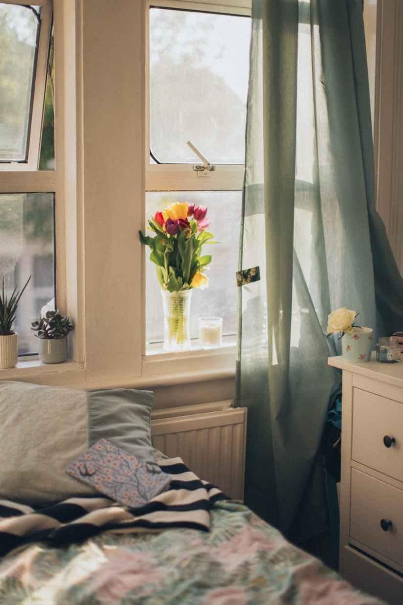 tulips in clear vase beside window